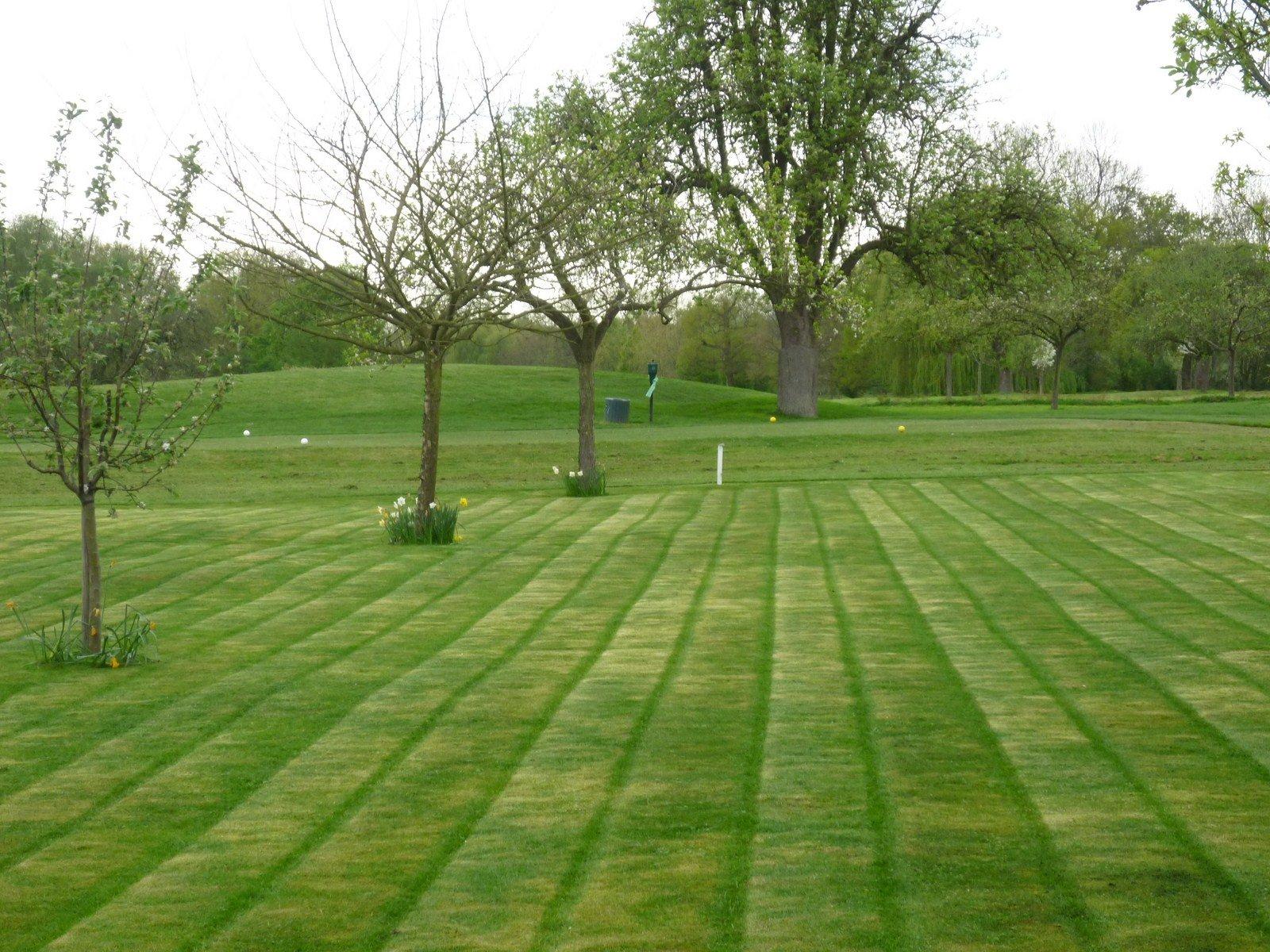Tonte de pelouse jardin de 2000m2 savoir faire services for Tarif de tonte de pelouse